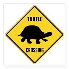 Slow Turtle Crossing >> Turtle Crossing Cootes Paradise Band